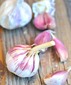 Garlic-ayurvedic diet