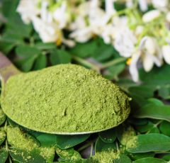 WHY YOU NEED MORINGA